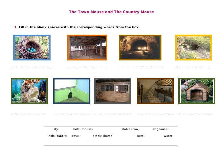 The Town Mouse and The Country Mouse     1. Fill in the blank spaces with the corresponding words from the box     _______...