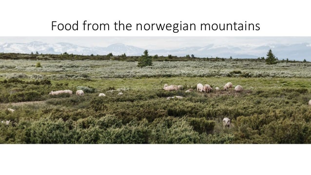 Food from the norwegian mountains
