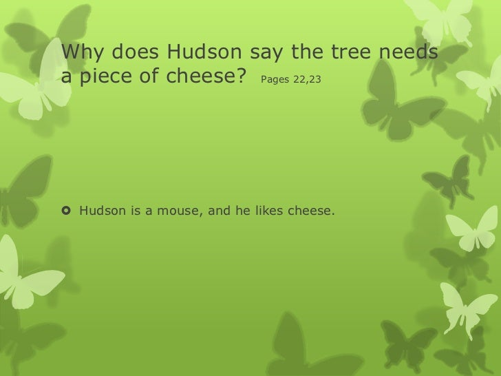 What is a cheese tree?
