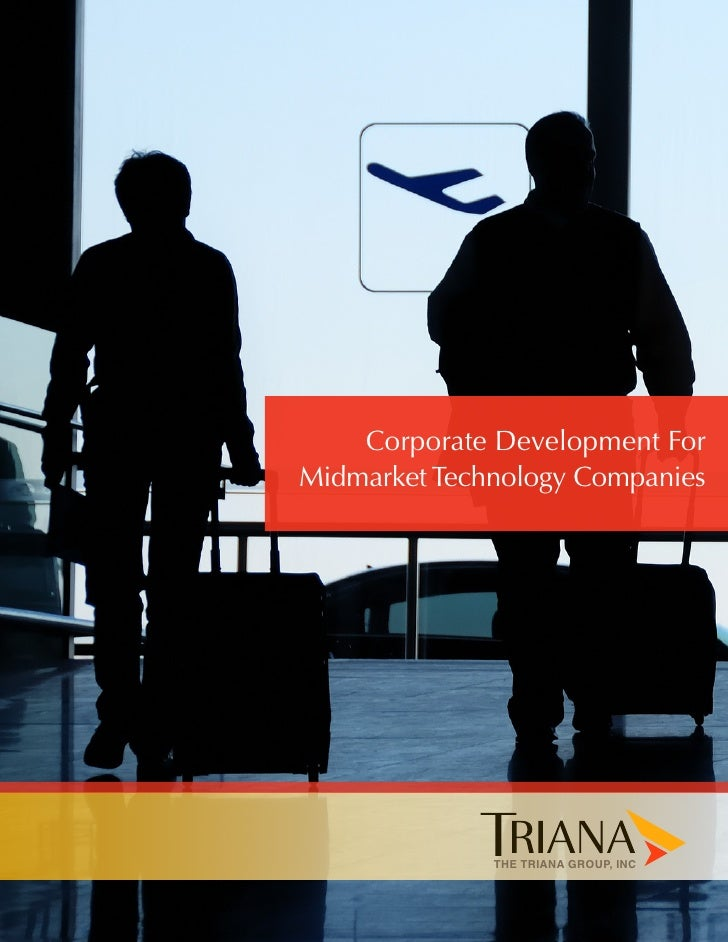 Corporate Development ForMidmarket Technology Companies              THE TRIANA GROUP, INC