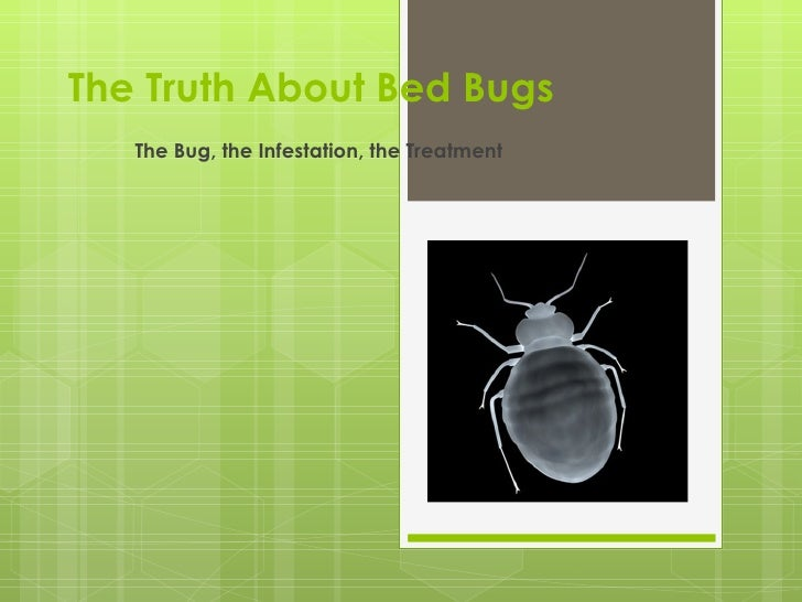 The Truth About Bed Bugs   The Bug, the Infestation, the Treatment