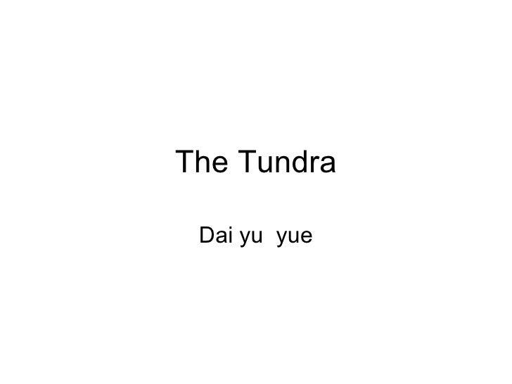 The Tundra Dai yu  yue