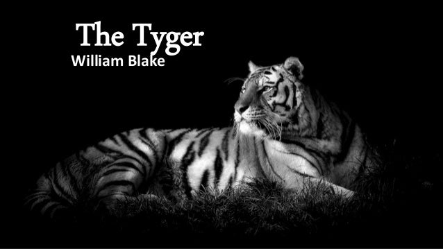 what does the tyger symbolize