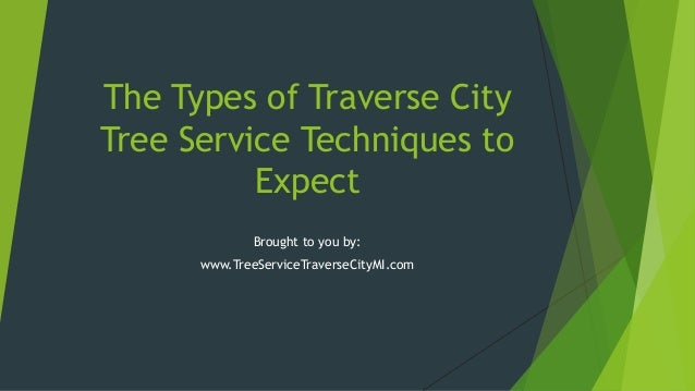 The Types of Traverse CityTree Service Techniques toExpectBrought to you by:www.TreeServiceTraverseCityMI.com