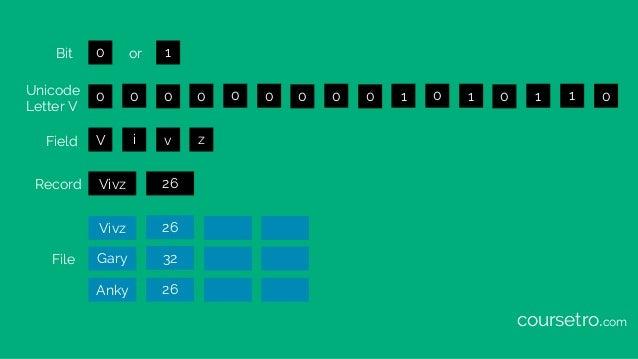 0 0 0 0 0 0 0 0 0 0 1 0 1 0 1 1 0 1 V i v z Vivz 26 Vivz 26 Gary 32 Anky 26 Bit Unicode Letter V Field File Record or cour...