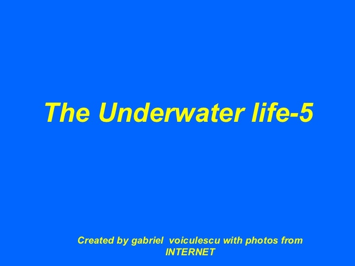The Underwater life-5 Created by gabriel  voiculescu with photos from INTERNET