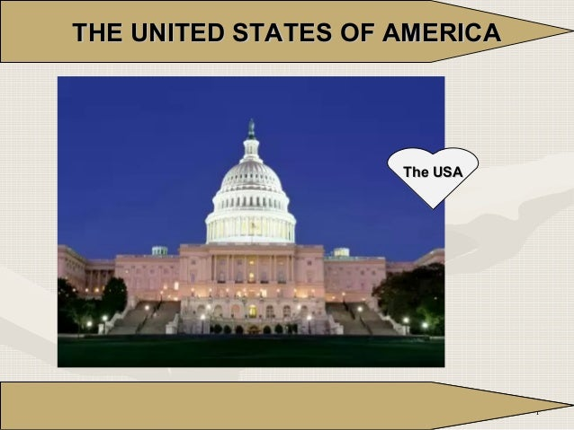 THE UNITED STATES OF AMERICA  The USA  1  1