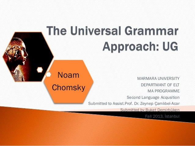 the universal grammar approach