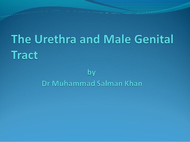 Contents Structural Lesions of the Urethral Wall Congenital Scrotal Disorders Extra testicular Scrotal Disorders