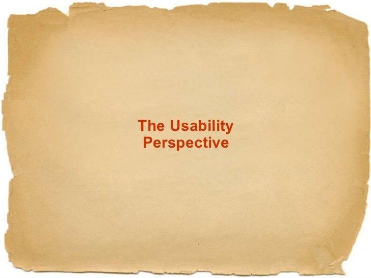 The Usability Perspective