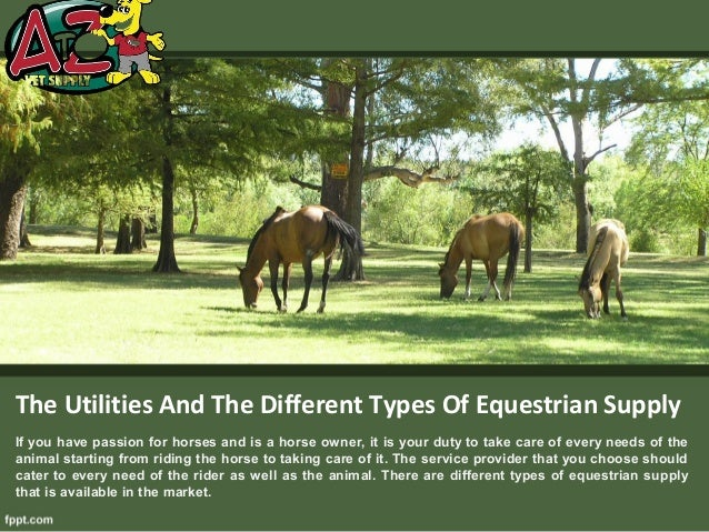 The Utilities And The Different Types Of Equestrian SupplyIf you have passion for horses and is a horse owner, it is your ...