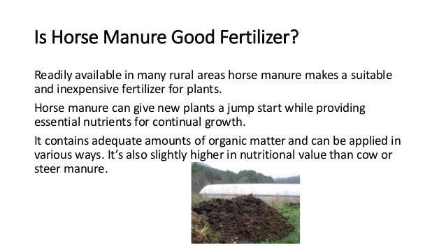 3. Is Horse Manure Good Fertilizer?