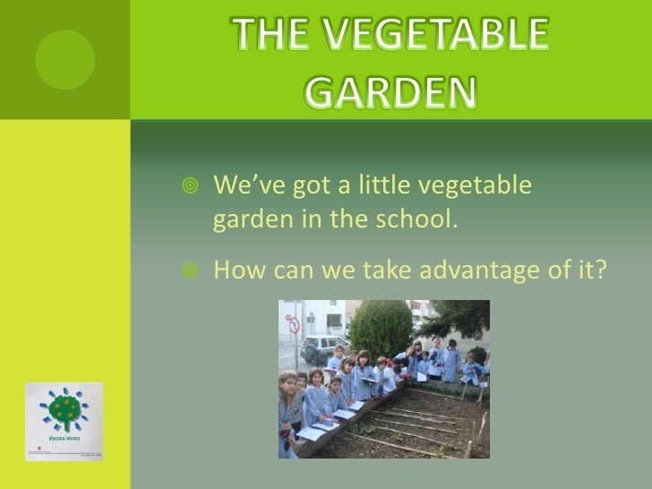    We've got a little vegetable    garden in the school.   How can we take advantage of it?