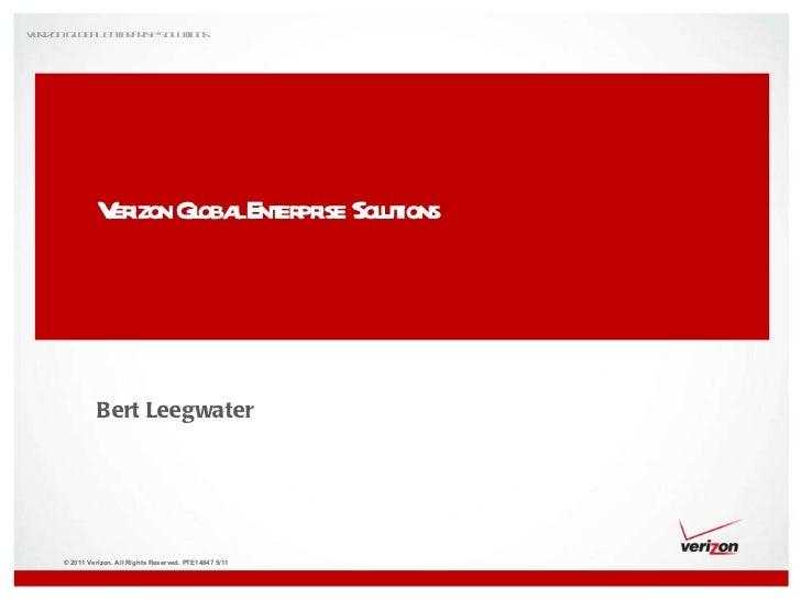 Verizon Global Enterprise Solutions Bert Leegwater