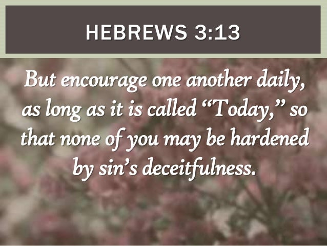 Image result for Hebrews 3:13