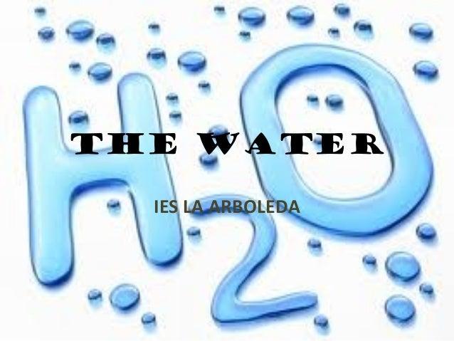 THE WATER  IES LA ARBOLEDA