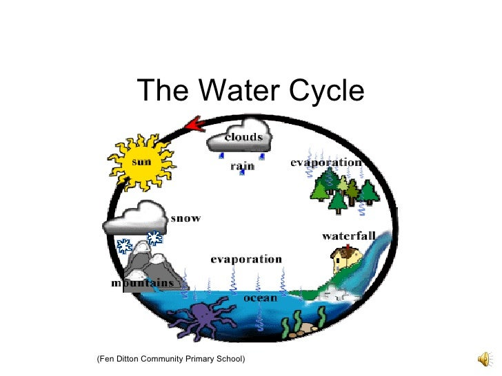 The Water Cycle Fen Ditton Community Primary School