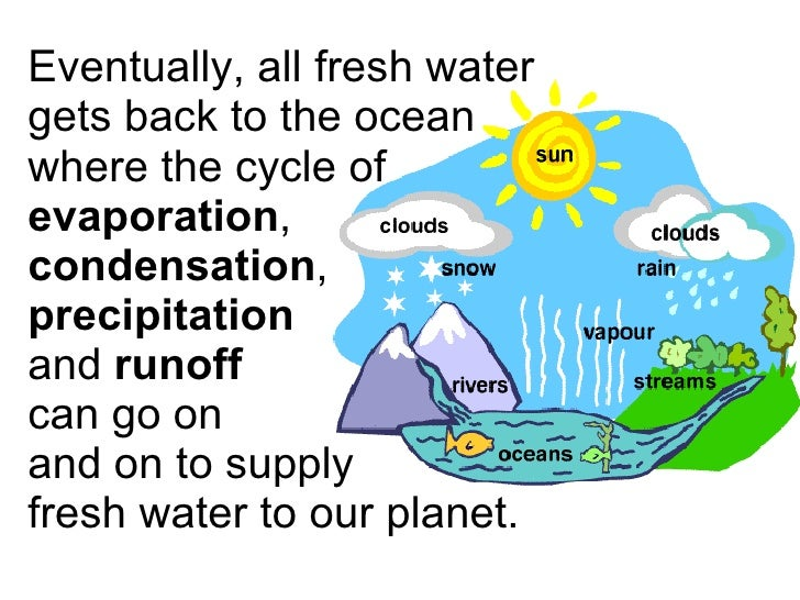 the water cycle 3 essay Water is one of the basic necessities of life we require plenty of water every day for drinking, cooking and washing short essay on water category.