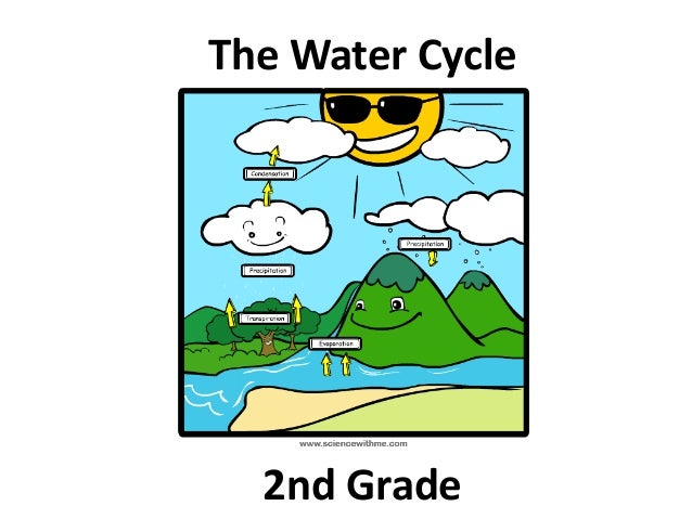 2nd grade The Water Cycle