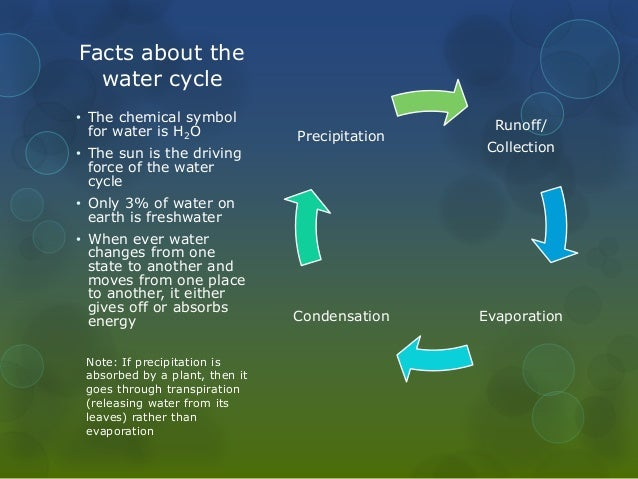 Water Cycle Facts Precipitation Free Printable