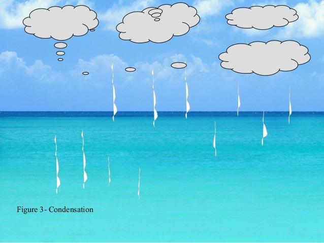 Precipitation Water Cycle