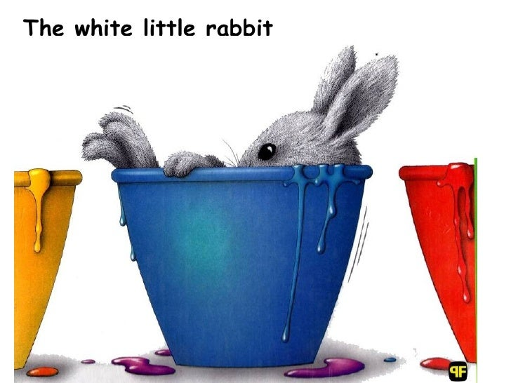 The white little rabbit