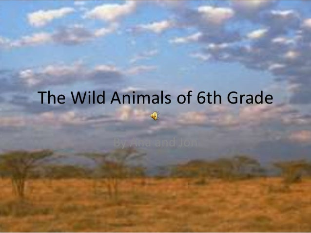 The Wild Animals of 6th GradeBy Ana and Jon
