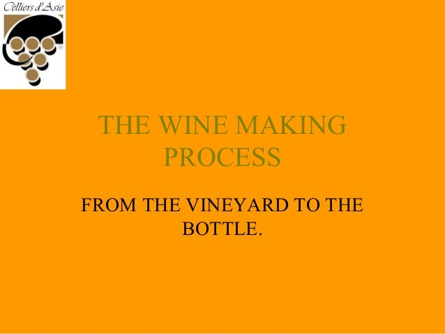 THE WINE MAKING PROCESS FROM THE VINEYARD TO THE BOTTLE.