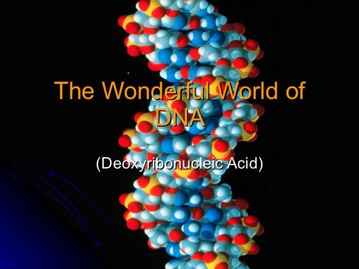 The Wonderful World of DNA (Deoxyribonucleic Acid)