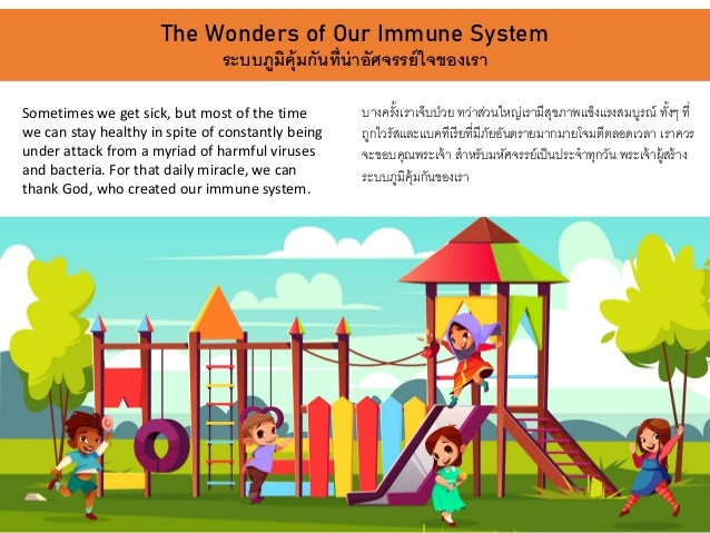 The Wonders of Our Immune System ระบบภูมิคุ้มกันที่น่าอัศจรรย์ใจของเรา Sometimes we get sick, but most of the time we can ...