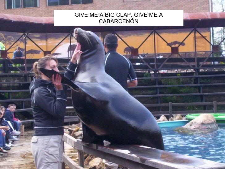 GIVE ME A BIG CLAP. GIVE ME A CABARCENÓN