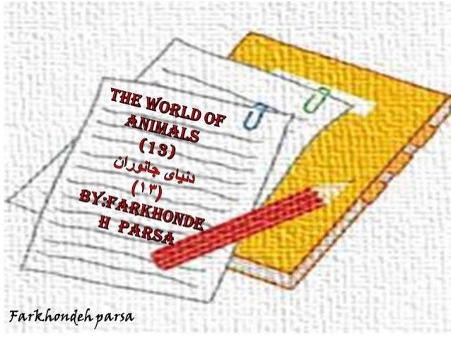 The world of animals 13-14