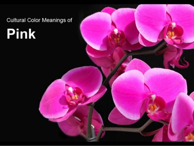 Japan • everyday life Korea • color of mourning Thailand • color for Friday Belgium • color for baby girls Cherokees • def...