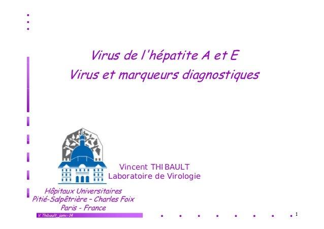Virus de l'hépatite A et E p Virus et marqueurs diagnostiques  Vincent THIBAULT Laboratoire de Virologie Hôpitaux Universi...