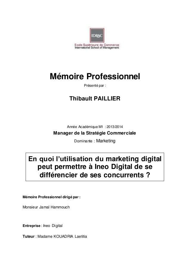 Mémoire Professionnel Présenté par : Thibault PAILLIER Année Académique M1 : 2013/2014 Manager de la Stratégie Commerciale...