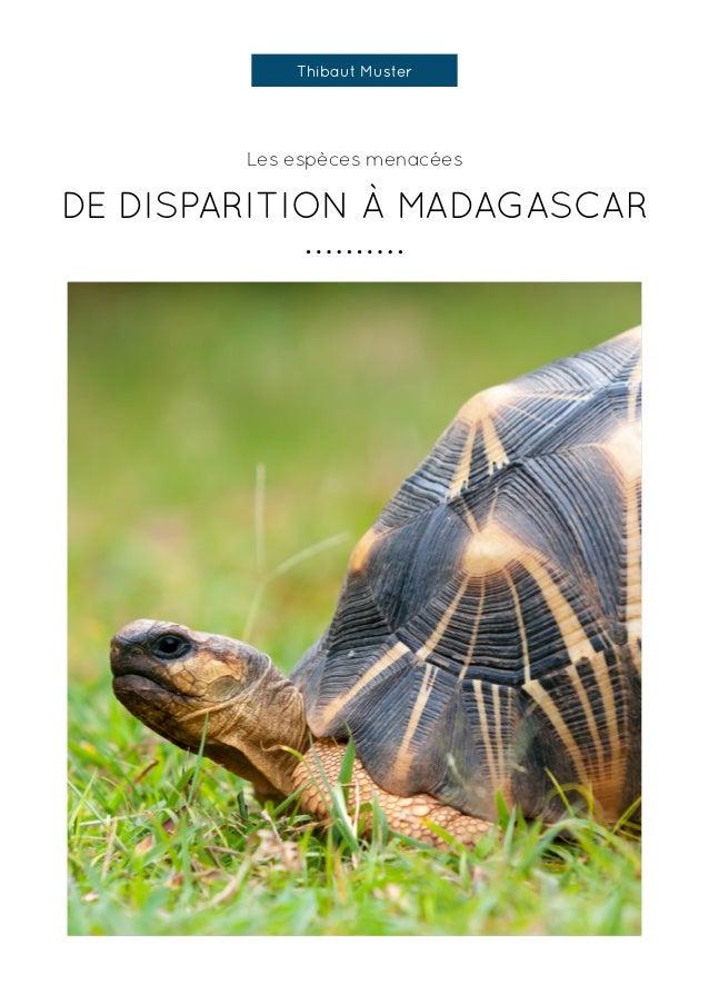 Les espèces menacées DE DISPARITION À MADAGASCAR Thibaut Muster