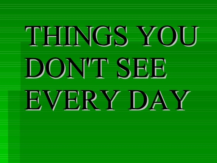 Every Day Do Something That Will Inch: Things You Dont See Everyday