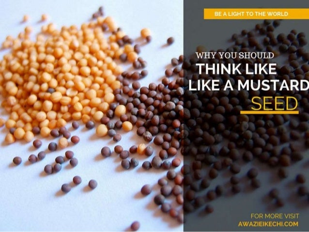 Why You Should Think Like A Mustard Seed