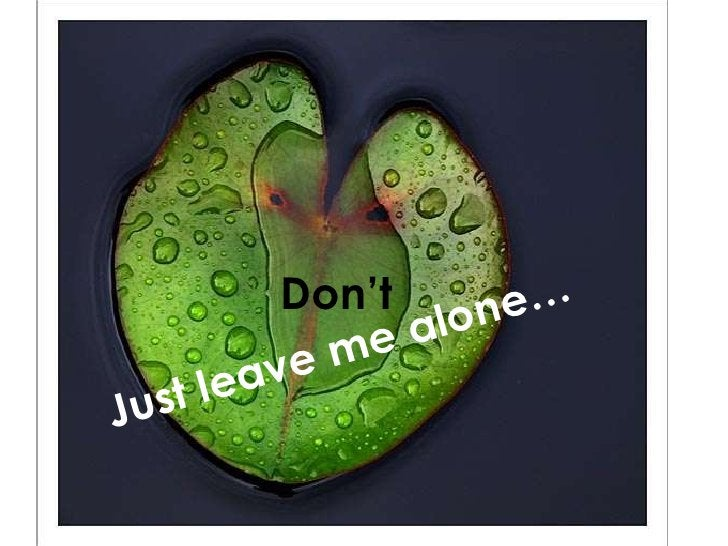 Just leave me alone… Don't