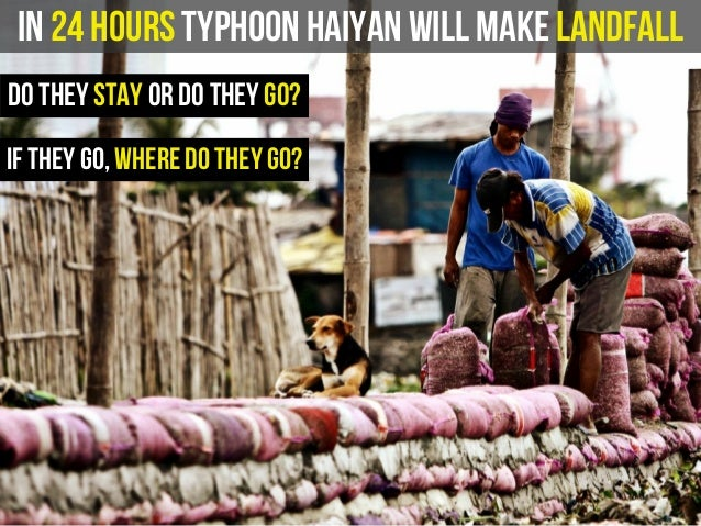 In 24 hours Typhoon Haiyan will make landfall do they stay or do they go? if they go, where do they go?