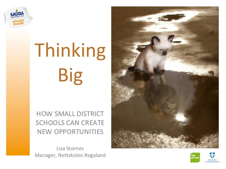 Thinking  BigHOW SMALL DISTRICTSCHOOLS CAN CREATENEW OPPORTUNITIES        Lisa StornesManager, Nettskolen Rogaland