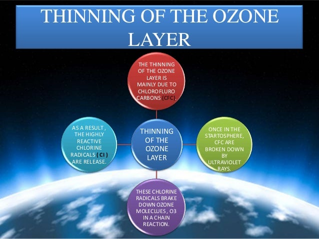thinning of ozone layer essay Here is a compilation of essays on 'ozone layer depletion' for class 6, 7, 8, 9, 10, 11 and 12 find paragraphs, long and short essays on 'ozone layer depletion' especially written for school and college students.