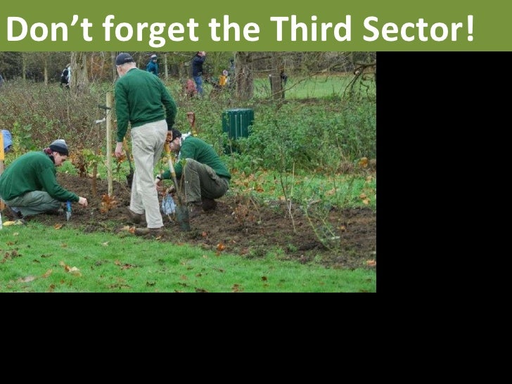 Don't forget the Third Sector!