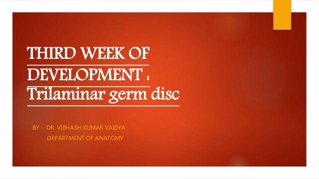 THIRD WEEK OF DEVELOPMENT : Trilaminar germ disc BY :- DR. VIBHASH KUMAR VAIDYA DEPARTMENT OF ANATOMY