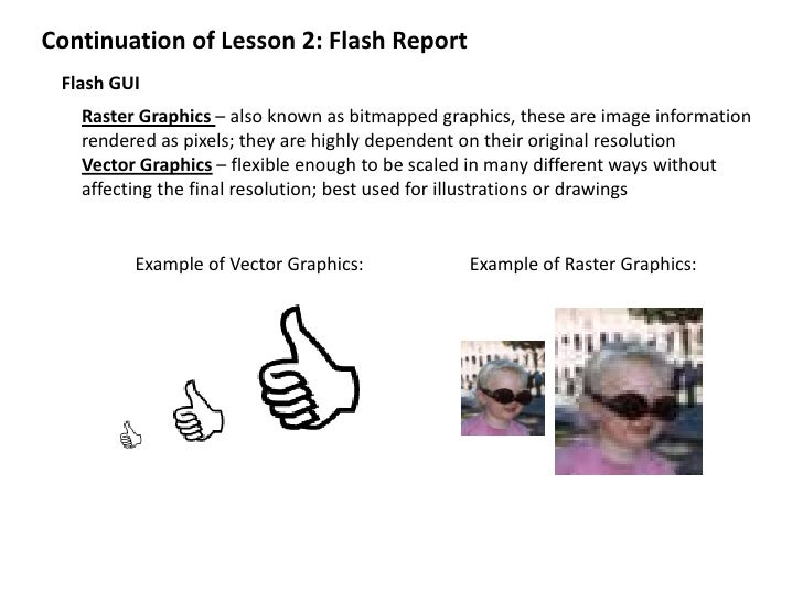 Continuation of Lesson 2: Flash Report<br />Flash GUI<br />Raster Graphics – also known as bitmapped graphics, these are i...