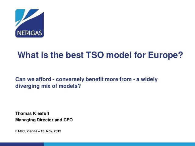 What is the best TSO model for Europe?Can we afford - conversely benefit more from - a widelydiverging mix of models?Thoma...