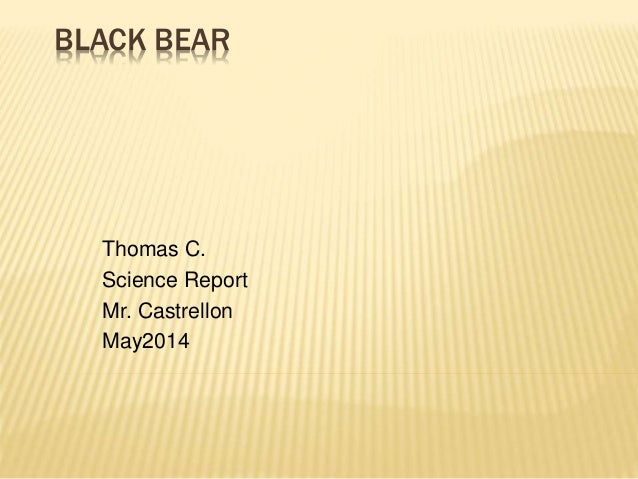 BLACK BEAR Thomas C. Science Report Mr. Castrellon May2014