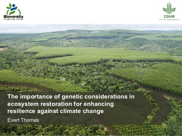 The importance of genetic considerations in  ecosystem restoration for enhancing  resilience against climate change  Evert...
