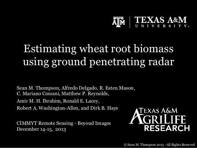 Estimating wheat root biomass using ground penetrating radar Sean M. Thompson, Alfredo Delgado, R. Esten Mason, C. Mariano...