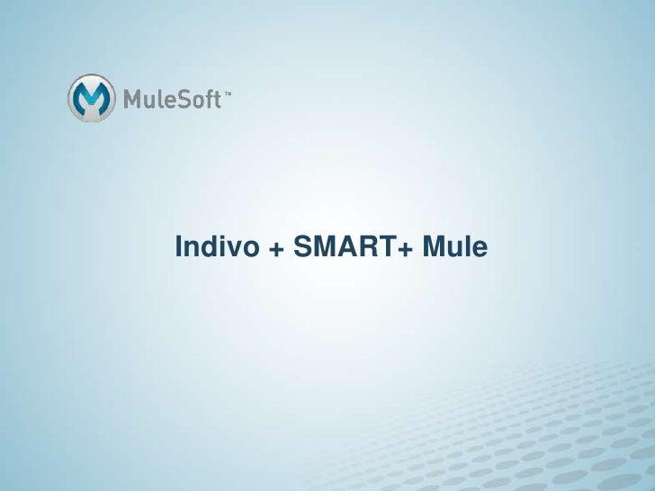 Indivo + SMART+ Mule